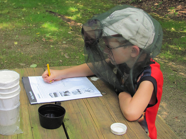 Peanut at Cuyahoga NP in mosquito net filling out Ranger Badge Booklet at lunch.